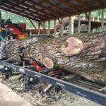 Jewell Hardwoods Lumberyard 12