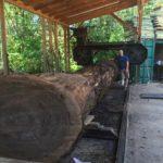 Jewell Hardwoods Lumberyard 16