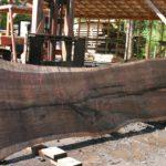 Jewell Hardwoods Lumberyard 22