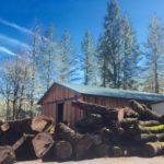 Jewell Hardwoods Lumberyard 26