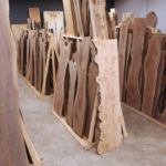 Live edge furniture slab showroom at Jewell Hardwoods