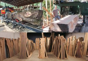 Jewell Hardwoods sawmills and slab showroom