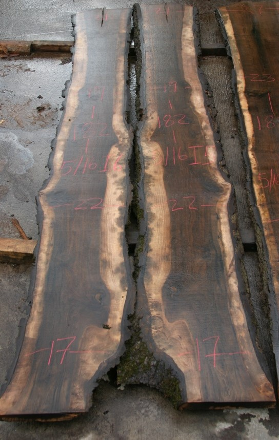 https://slabs.jewellhardwoods.com/walnut-black-516i5-i6