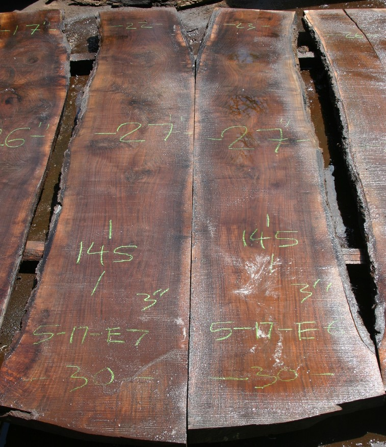 https://slabs.jewellhardwoods.com/walnut-black-517e6-e7